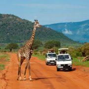 Tsavo East and Amboseli Safari