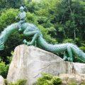 siguiendo-huellas-dragon